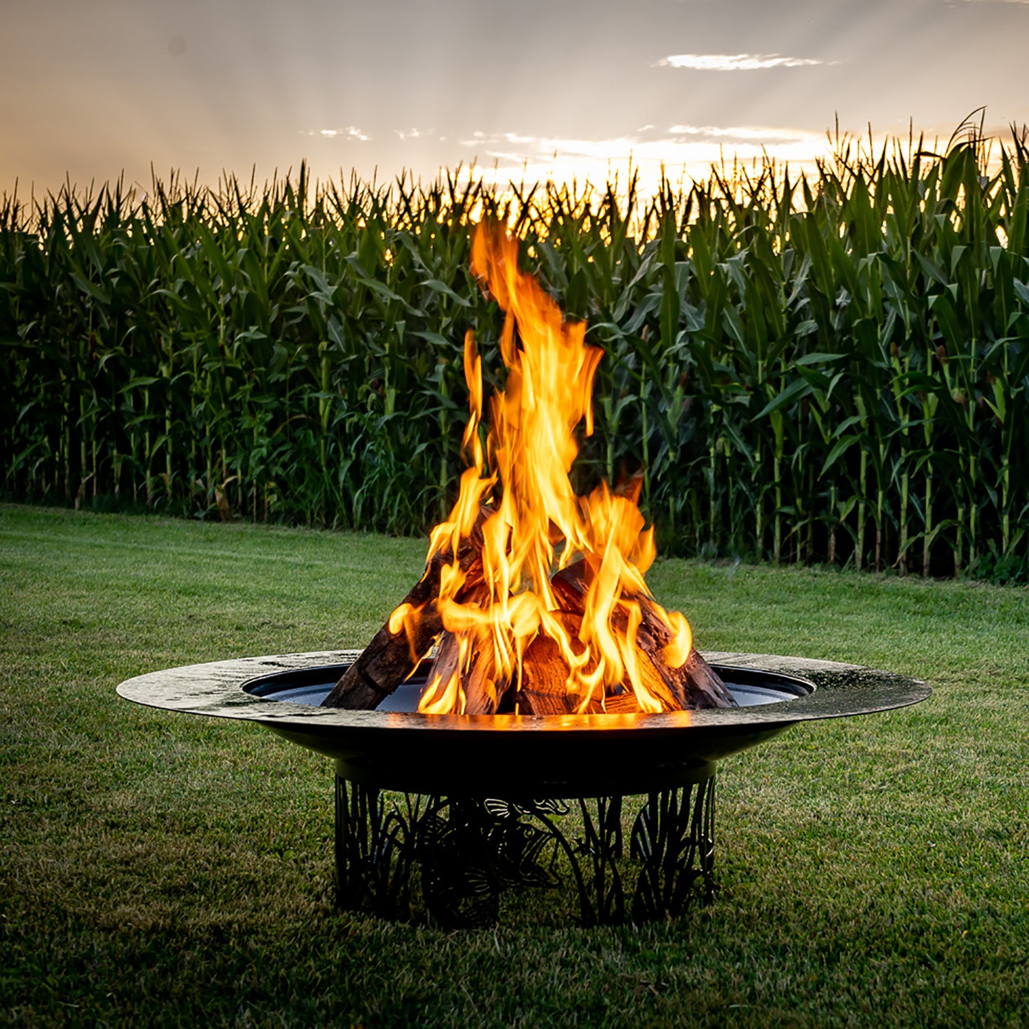 Steel Living Fire Pits