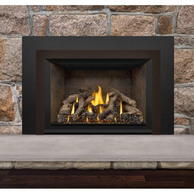 Napoleon Gas Fireplace Insert