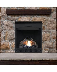 Napoleon Ascent 30 Gas Direct Vent Fireplace - B30