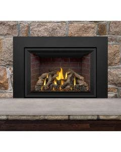Napoleon Gas Direct Vent Fireplace Insert - GDIX4 No Face