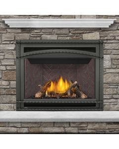 Napoleon Ascent GX42 Gas Direct Vent Fireplace - GX42